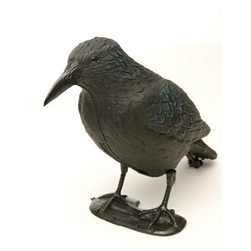 Crow Decoy (with legs)